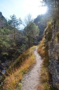 grand_canyon_3