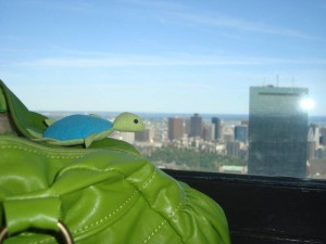 Boženka na Prudential Tower :)