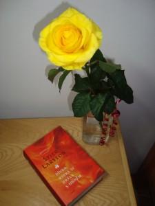 Zátiší s Larssonem a výroční růží :D