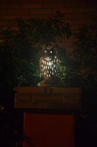 Owl Castle